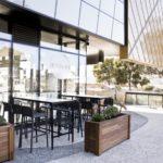 8 Yolks Cafe Belmont
